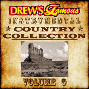 Drew's Famous Instrumental Country Collection, Vol. 9 album