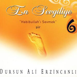 Habibullah'ı Sevmek cover art