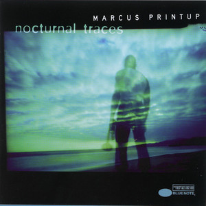 Nocturnal Traces album