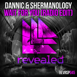 Wait For You (Radio Edit)