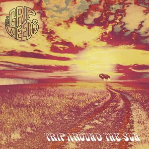 Trip Around the Sun album