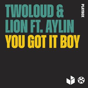 You Got It Boy (feat. Aylin)