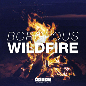 Wildfire (Radio Edit)