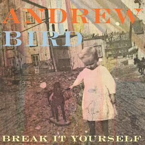 Break It Yourself - Andrew Bird