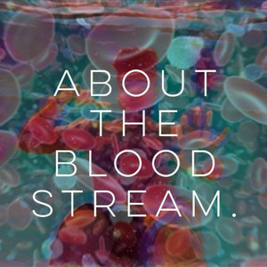 About the Bloodstream . album