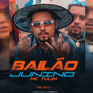 Bailão Junino cover art