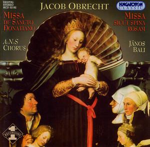 Obrecht: Missa De Sancto Donatiano / Missa Sicut Spina Rosam
