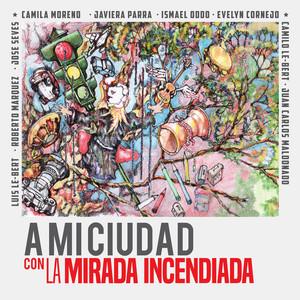 A Mi Ciudad Con la Mirada Incendiada (Homenaje a Rodrigo Rojas de Negri)