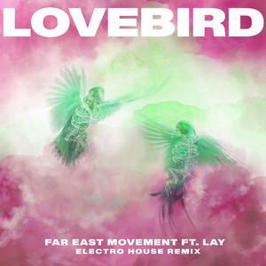 Lovebird (Electro House Remix)