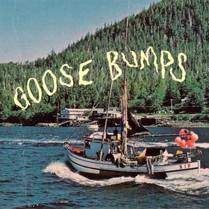 Goose Bumps - Boyscott