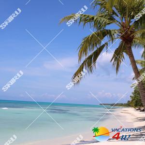 Vacation (SONIKKU Remix)