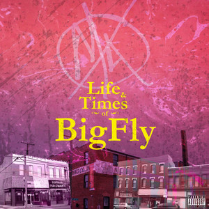Life & Times of BigFly