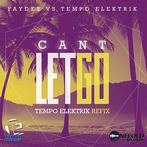 Can't Let Go (Faydee Vs Tempo Elektrik)
