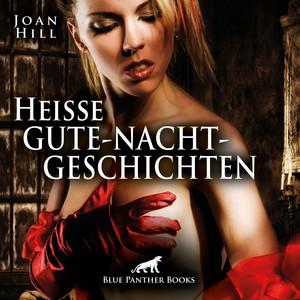 Heiße Gute-Nacht-Geschichten / Erotik pur für Männer und Frauen ... (Ein erotisches Hörbuch von blue panther books mit Sex, Leidenschaft, Erotik, Lust, Hörspiel) Audiobook