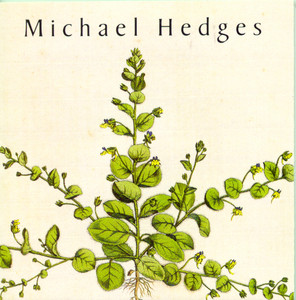 The Jade Stalk by Michael Hedges