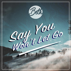 Say You Won't Let Go