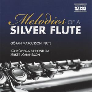 2 Sentimental Romances, Op. 28: No. 2 in F Minor - Arr. for Flute