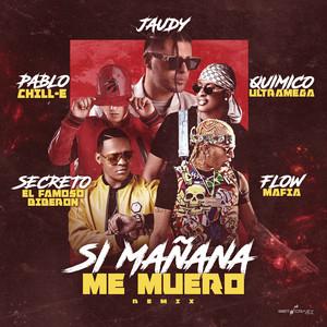 Si Mañana Me Muero (Remix)
