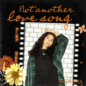 Not Another Love Song