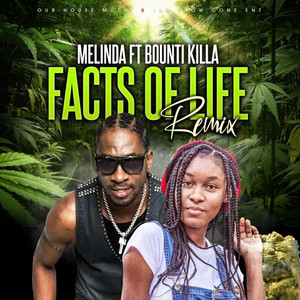 Facts of Life (Remix)
