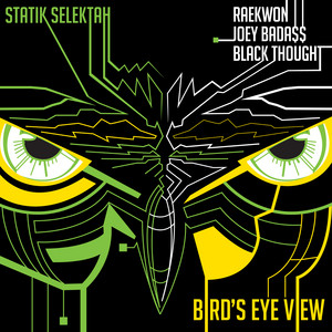 Bird's Eye View (feat. Raekwon, Joey Bada$$, Black Thought) - Single