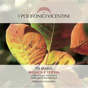 Signore delle cime by Bepi De Marzi, I Polifonici Vicentini, Pierluigi Comparin