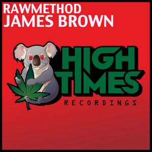 James Brown - Original Mix cover art