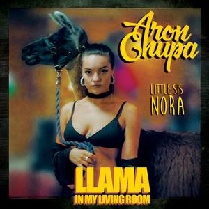 Llama In My Living Room - AronChupa