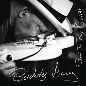 Flesh & Bone (Dedicated to B.B. King) cover art