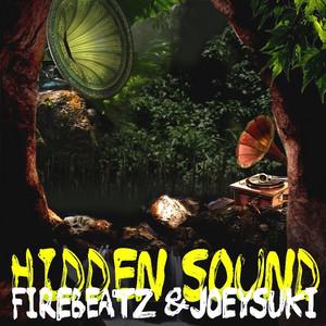 Hidden Sound