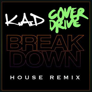 Breakdown (House Remix)