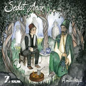 Seyyah-ı Avare cover art