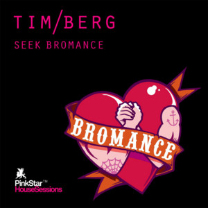 Seek Bromance - Avicii Vocal Edit cover art