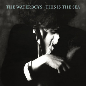 This Is the Sea  - The Waterboys