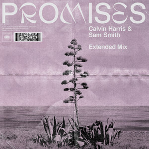 Promises (with Sam Smith) [Extended Mix]