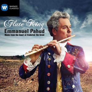 Flute Concerto in E Minor: II. Adagio un poco Andante cover art