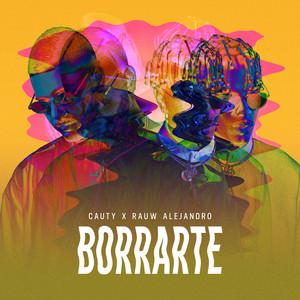 Borrarte