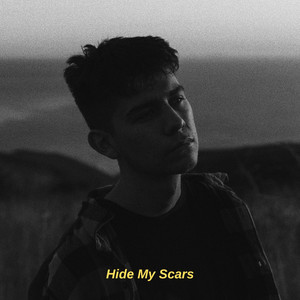 Hide My Scars