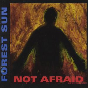 Not Afraid album