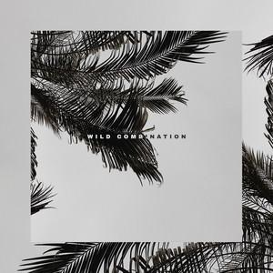 Wild Combination album