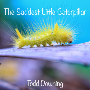 The Saddest Little Caterpillar