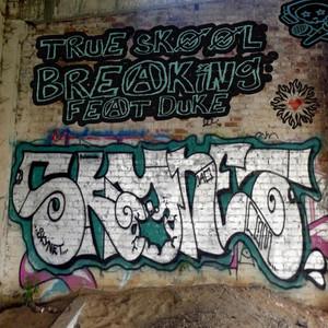 True Skool Breaking