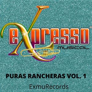 Puras Rancheras, Vol. 1