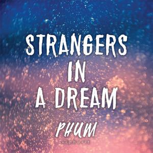 Strangers in a Dream