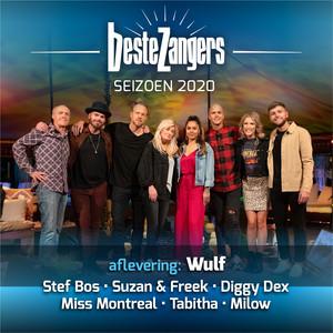 Beste Zangers Seizoen 2020 (Aflevering 7 - Wulf) album