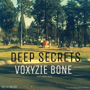 Deep Secrets album