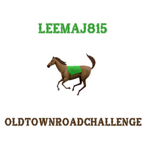 Old Town Road Challenge by LEEMAJ815