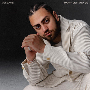 Can't Let You Go cover art