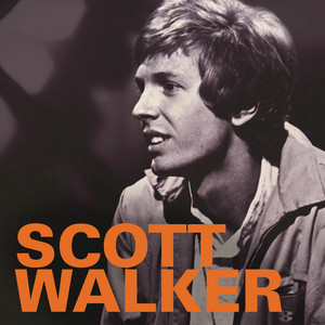 Scott Walker & The Walker Brothers - 1965-1970 album