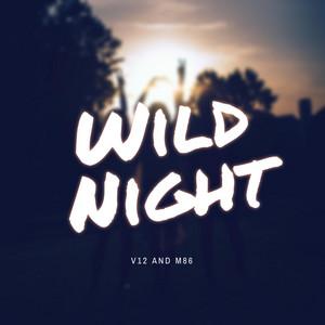 Wild Night cover art